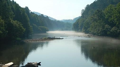 Forest Heritage Center ofrece Programa de Becas